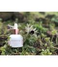 Blossom Jeju 粉紅山茶神菲花朵潤澤密集精華露 30ml